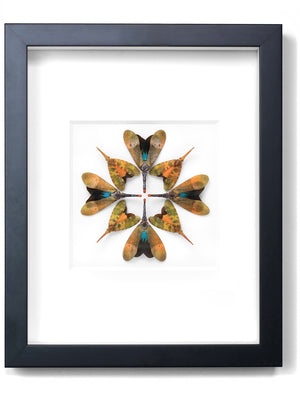 Load image into Gallery viewer, Framed Lanternfly Prism