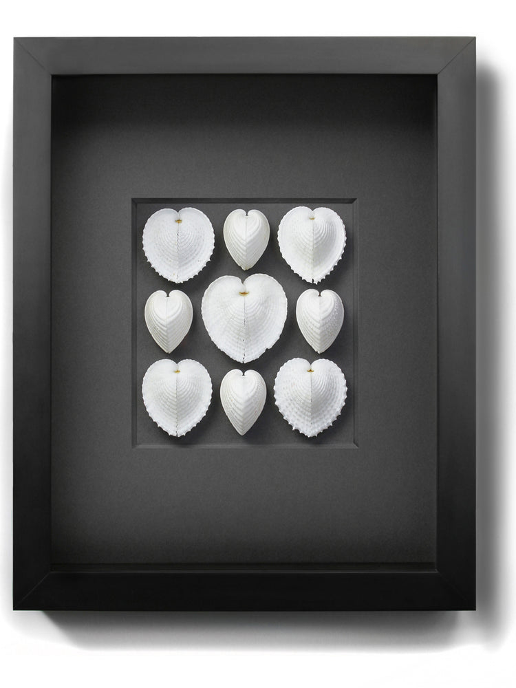 Load image into Gallery viewer, Framed Sea Hearts