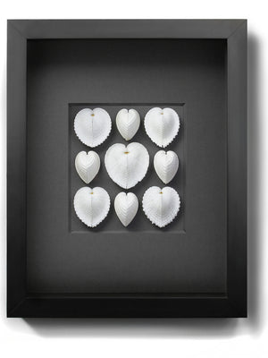 Framed Sea Hearts