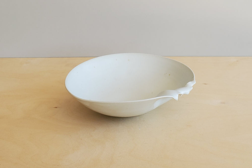 Carpel Series White Bowl