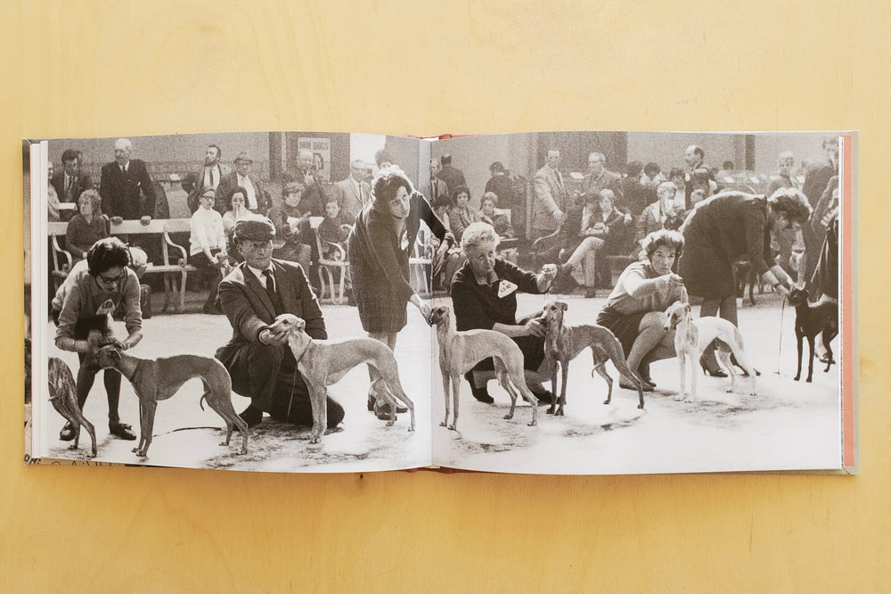 Load image into Gallery viewer, Dog Show 1961-1978