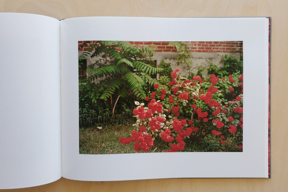 Load image into Gallery viewer, William Egglestons Flowers