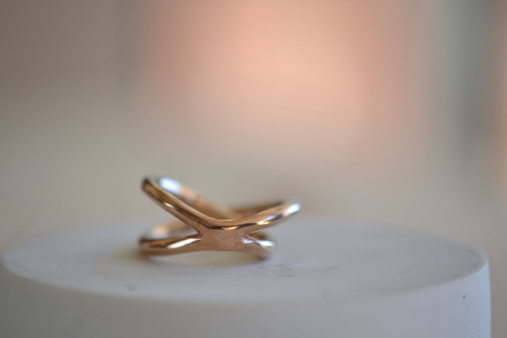 Load image into Gallery viewer, Monica Castiglioni Fili Fusi 13 Bronze Ring