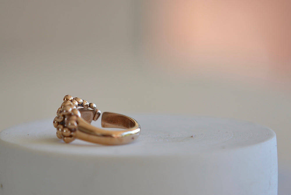 Load image into Gallery viewer, Monica Castiglioni Gocce 12B Ring Bronze