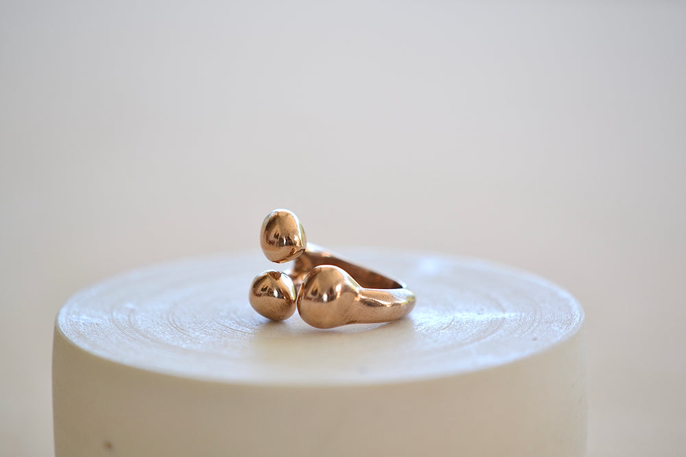 Load image into Gallery viewer, Monica Castiglioni Pistilli 20 Ring Bronze