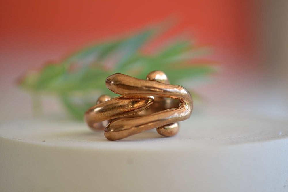 Load image into Gallery viewer, Monica Castiglioni Abbracci 01 Ring Bronze Double two rings