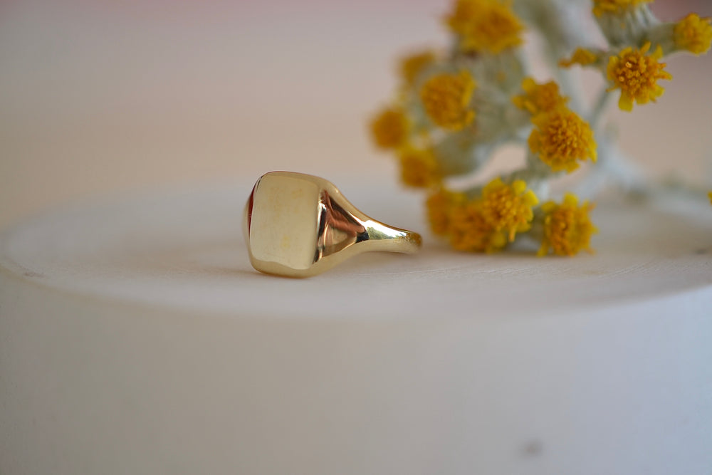 Load image into Gallery viewer, Makiko Wakita Grace Rectangle Signet Ring 14k yellow gold solid