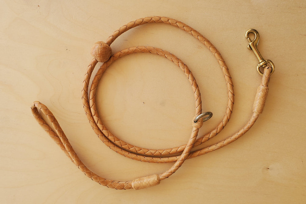 Load image into Gallery viewer, Braided Leather Dog Leash