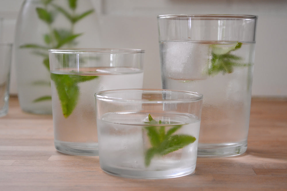 Bodega Clear Glass Tumblers