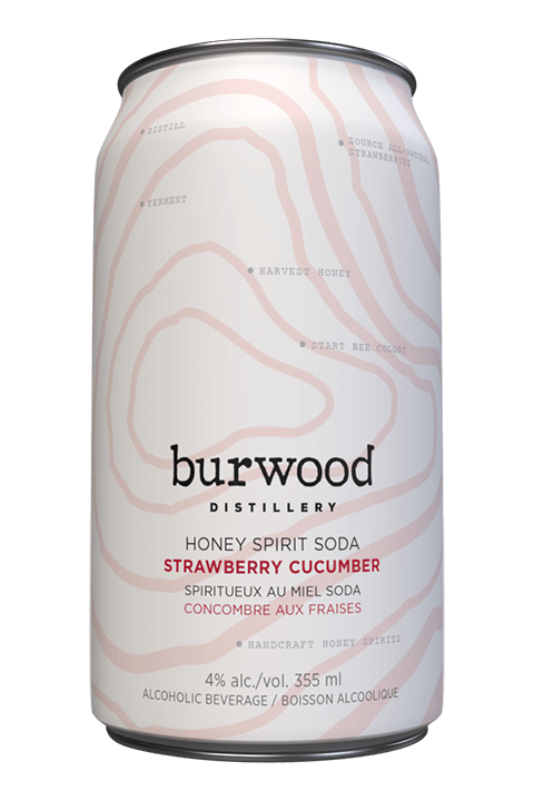 BURWOOD STRAWBERRY CUCUMBER 6 CANS