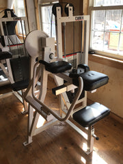 PreOwned Cybex Bicep Machine and Tricep machine for pickup local delivery only
