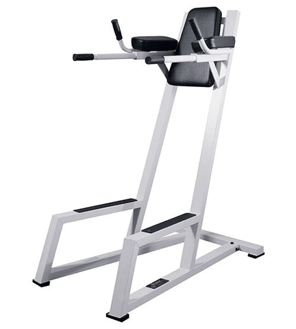 YORK® VKR (Vertical Knee / Leg Raise) With Dip Station