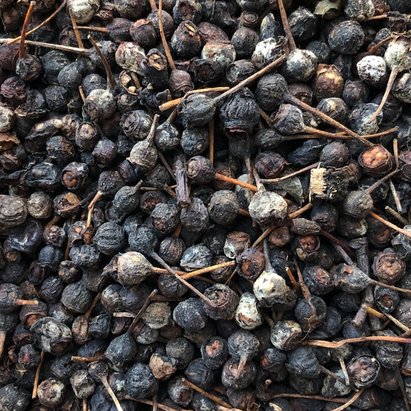 Smooth Serviceberry Dried Berries (seeds) - (Amelanchier laevis)