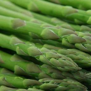 Asparagus Mary Washington - (Asparagus Officinalis) Seeds
