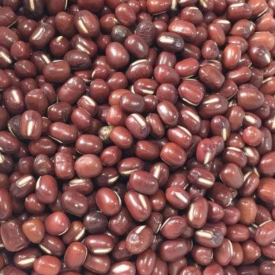 Bean (Adzuki) Wase - (Vigna Angularis) Seeds