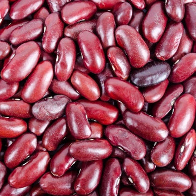 Bean (Bush/dry) Dark Red Kidney - (Phaseolus Vulgaris) Seeds