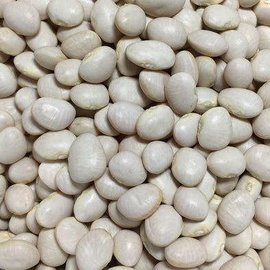 Bean (Pole) Lima White Dixie Butter Pea - (Phaseolus Lunatus) Seeds