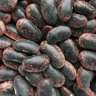 Bean (Pole/dry) Scarlet Runner - (Phaseolus Coccineus) Seeds