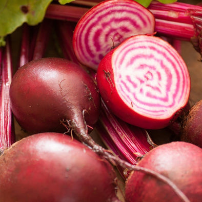 Beet Chioggia - (Beta Vulgaris Craca) Seeds