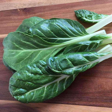 Chard Barese - (Beta Vulgaris Flavescens) Seeds