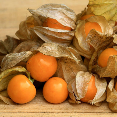 Ground Cherry Goldie - (Physalis Peruviana) Seeds