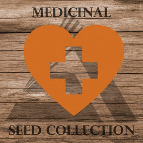 Medicinal Assortment - Seed Collection (21 Varieties) Assortment