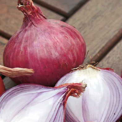 Onion Ruby Red - (Allium Cepa) Seeds
