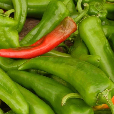 Pepper (Sweet/hot) Anaheim - (Capsicum Annum) Seeds