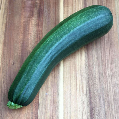 Squash (Summer) Black Beauty Zucchini - (Cucurbita Pepo) Seeds