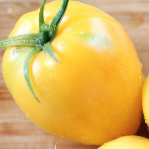 Tomato Powers Heirloom - (Solanum Lycopersicum) Seeds