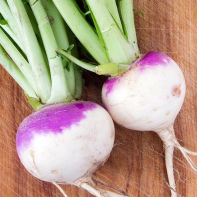 Turnip Purple Top White Globe - (Brassica Rapa Rapa) Seeds