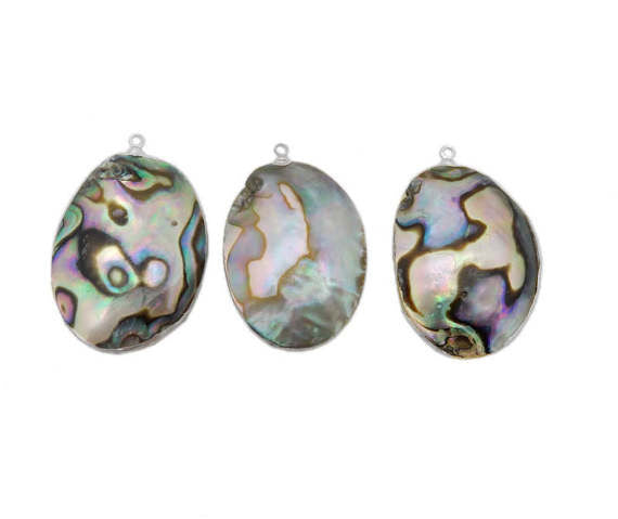 Abalone Freeform Oval Pendant with Electroplated 24k Gold or Silver Edge