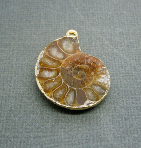 Ammonite Halve Pendant with Electroplated 24k Gold - Ammonite Pendant