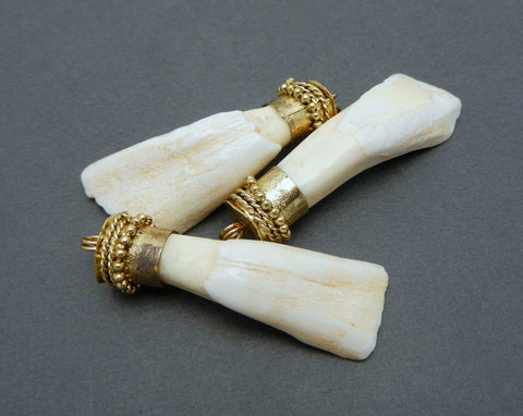 Bone Claw Pendant Charm with Brass cap and bail - Bone Claw