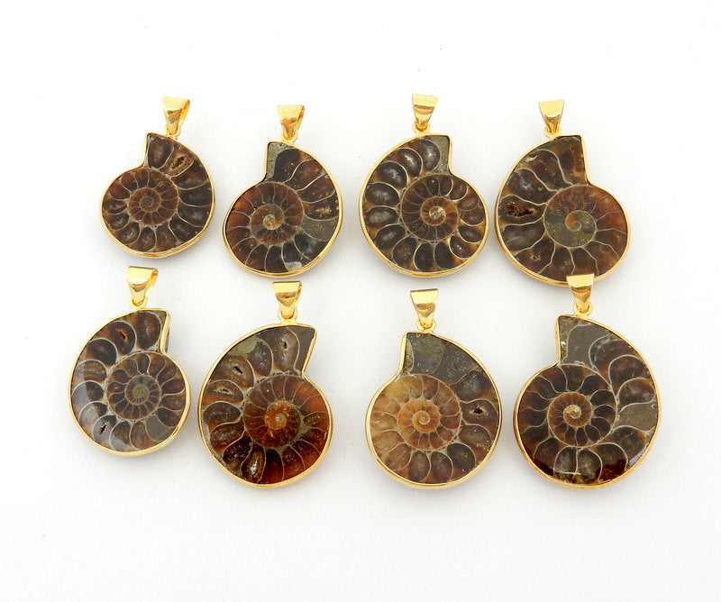 Half Ammonite Pendant Set in a Gold Plated Bezel Charm (S95B5-12)