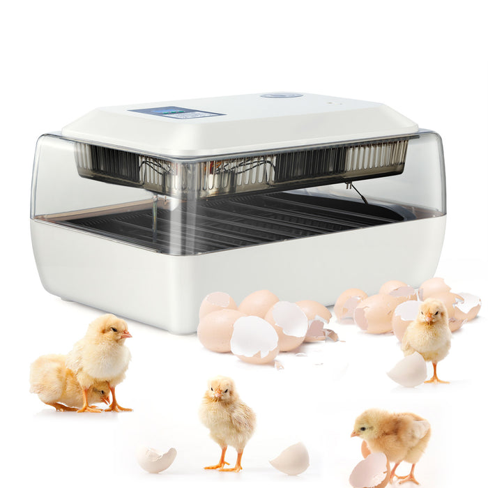Digital Fully Automatic Egg Incubator 24 Eggs Poultry Hatcher for Chickens Ducks Goose Birds