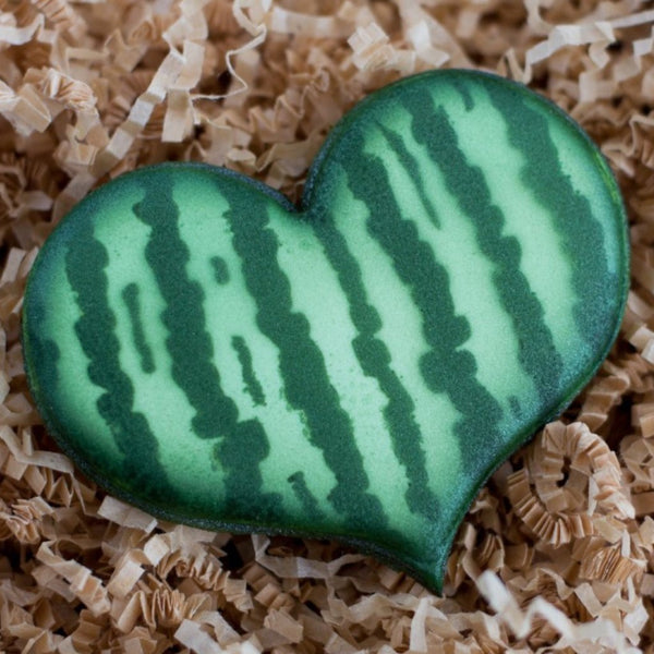 Watermelon Rind Stripes Stencil