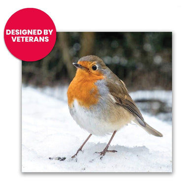Help for Heroes A Winter Robin