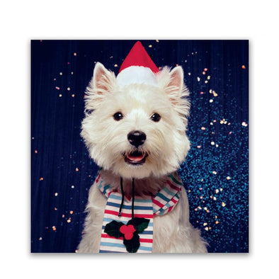 Help for Heroes Festive Westive Christmas Cards