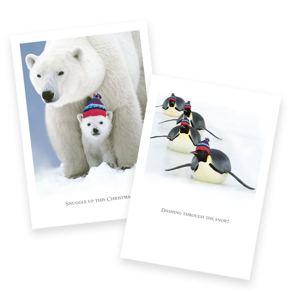 Help for Heroes Snuggly Christmas Card Pack
