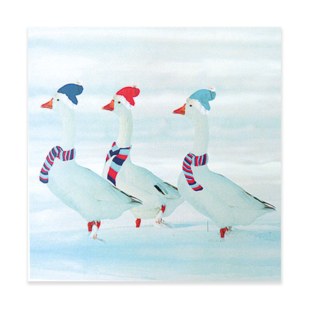 Three Geese Christmas Card - pack of 10