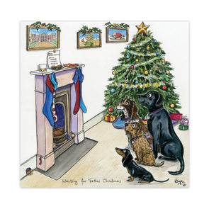 Help for Heroes Bryn Parry: Waiting for Father Christmas - 10 pack