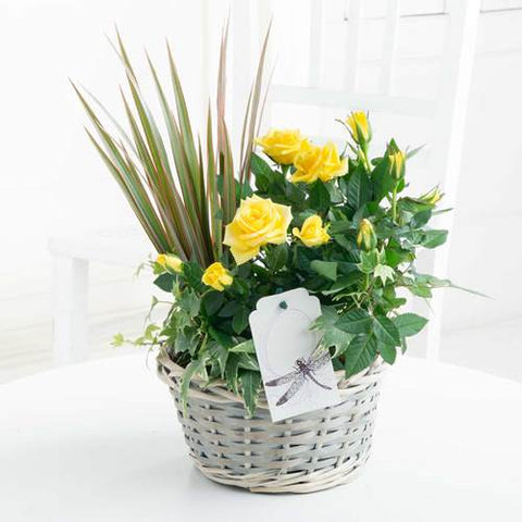 Flowers for Heroes - Yellow Rose Medley Basket