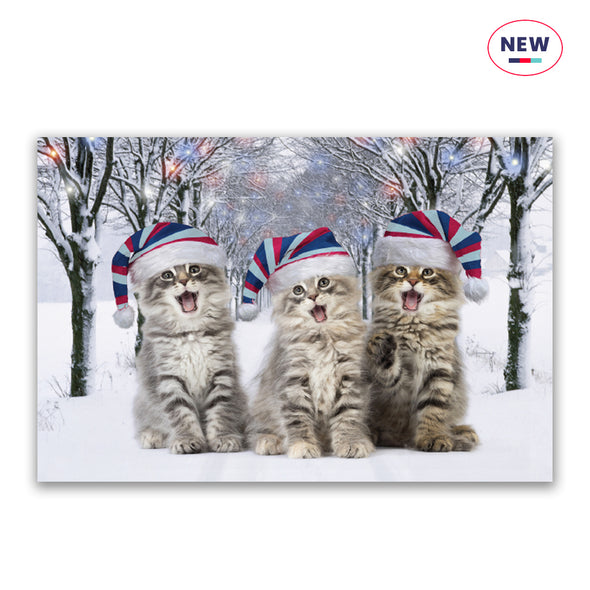 Help for Heroes Purr-fect Christmas Christmas Cards