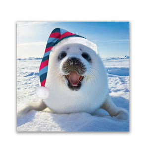 Help for Heroes Santa Baby Seal Christmas Cards