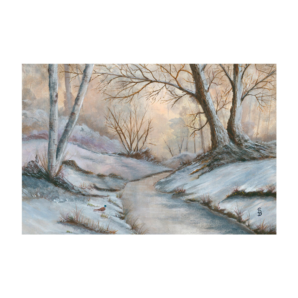 Winter Scene and Robin Christmas Cards - pack of 10 | Help for ...