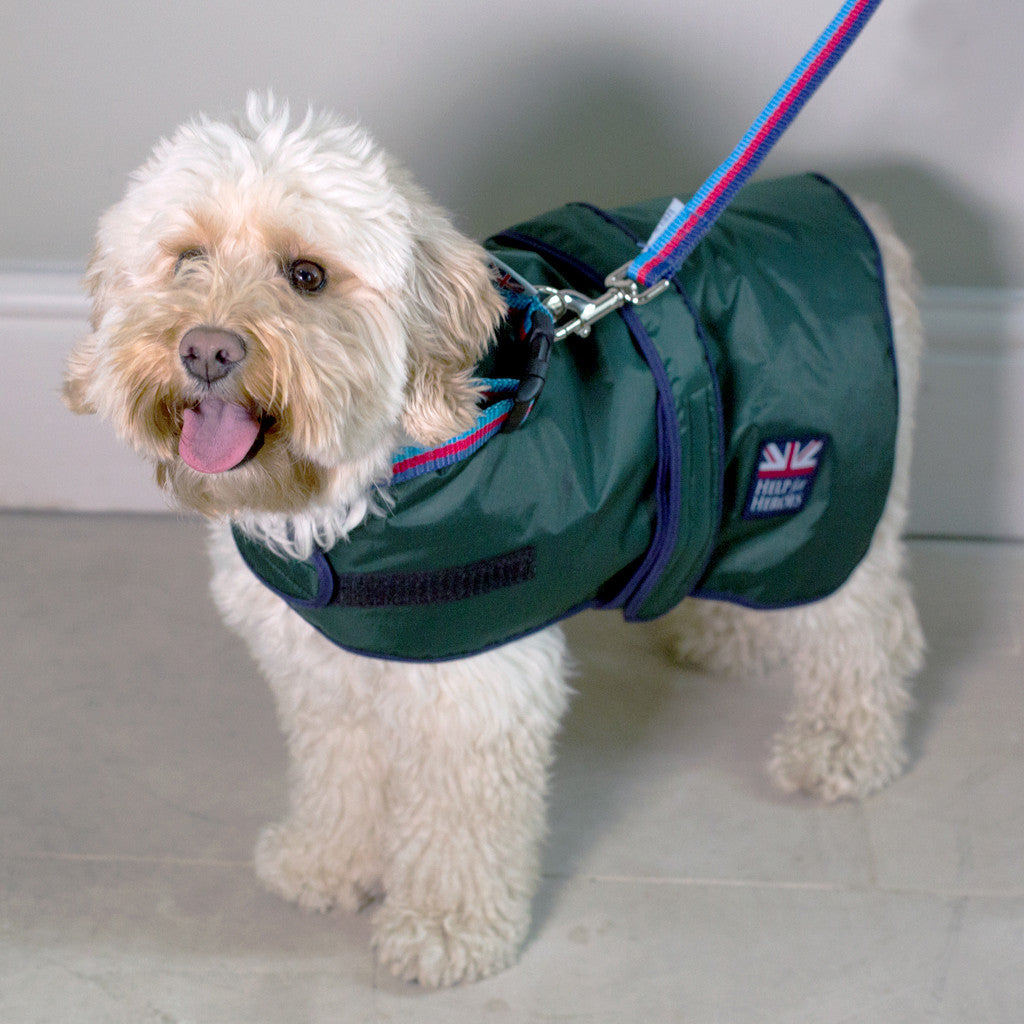 Help for Heroes Waterproof Dog Coat 55cm