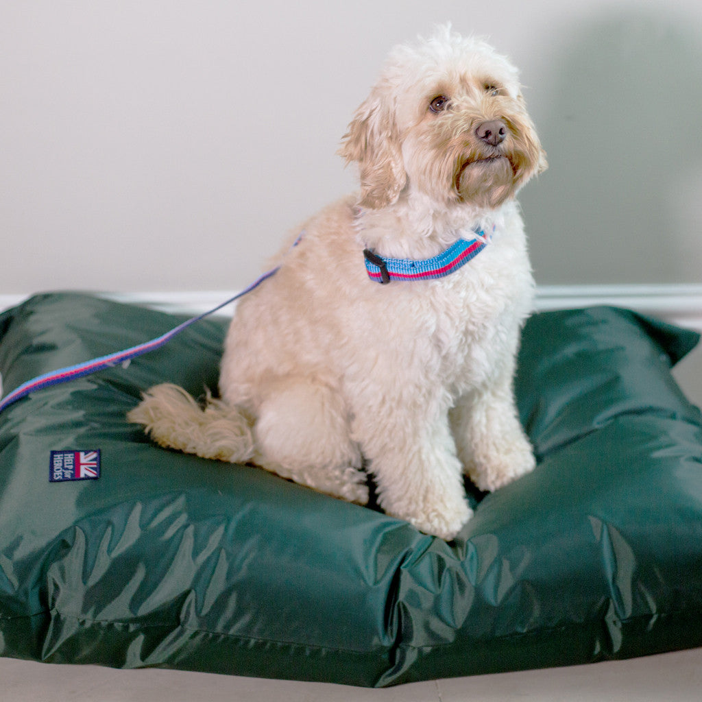 Help for Heroes Waterproof Dog Bed - Medium