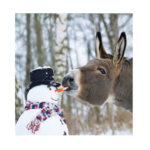 Help for Heroes Christmas Card - Snowman and Donkey