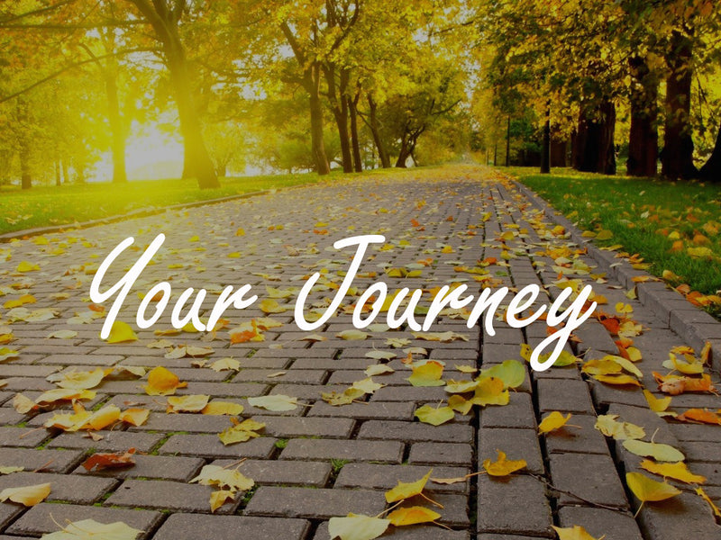 How to start and plan your journey?